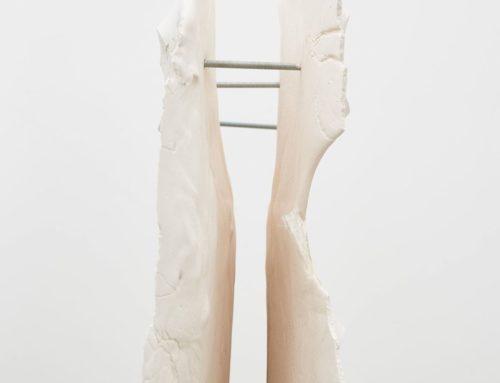 "LONDON. Nora Aurrekoetxea  ""Hard as Horse Hair, Soft as Feathers"" 25 june – 15 august 2020. Intersticio gallery."